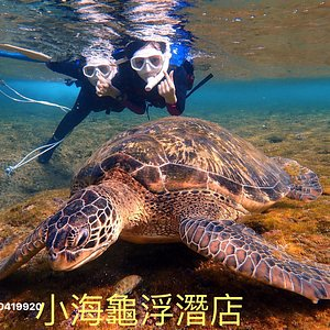 LINE : 520091314   電話 0933688520 1.浮潛合團,與不認識的人一起浮潛  2.餵熱帶魚 .與海龜同遊  3.解說與介紹海底生物 1.浮潛合團,與不認識的人一起浮潛  2.餵熱帶魚 .與海龜同遊  3.解說與介紹海底生物 1.浮潛合團,與不認識的人一起浮潛  2.餵熱帶魚 .與海龜同遊  3.解說與介紹海底生物 費用含裝備:夏天水母衣、冬天3mm防寒衣、救生衣、蛙鏡、 套鞋、 提供 200度-900度的近視蛙鏡 免費拍照 FB:小海龜浮潛店 (1).費用含裝備:夏天水母衣、冬天防寒衣3mm、救生衣、蛙鏡、止水閥呼吸管、浮潛拍照和教練 (2).著輕便衣服,可在衣服穿泳裝 (3).心臟病、氣喘、高血壓等心血管疾病及孕婦不可參與浮潛活動 (4).浮潛時間:08:00、09:00、10:00、11:00、12:00、13:00、14:00、15:00、16:00 (5).備有12間沖洗室及2間廁所另外有提供熱水、毛巾、吹風機 (6)有提供飲水