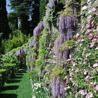 Particolare dei giardini