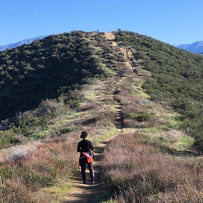 Zanja Peak Trail