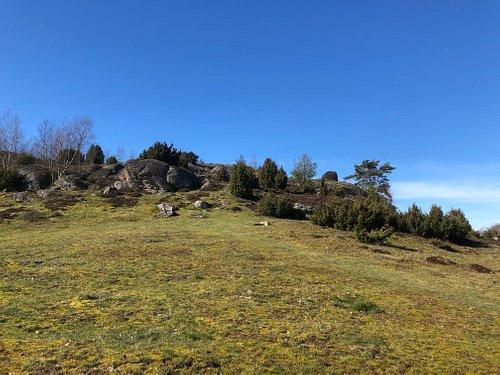 Gamla Varberg Naturreservat i Varberg