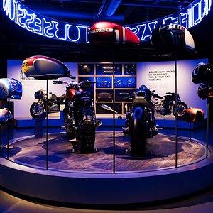 Custom Exhibition