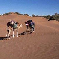Viajes baratos en Marruecos