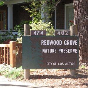 Redwood Grove Nature Preserve, Los Altos, CA