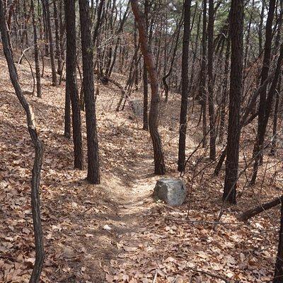 Seoul Trail section 1.