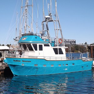 New Sports Fishing Boat for up to 17 passengers