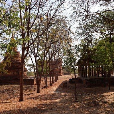 Hsin Phyu Shin Monastic Complex