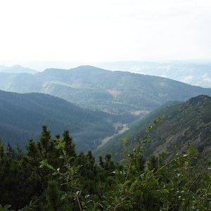 View from Przełęcz Między Kopami