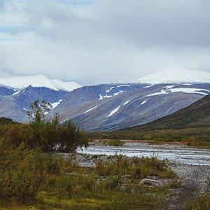 Polar Urals in Summer