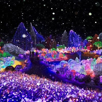 겨울, 오색별빛정원전, 하경정원