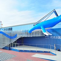 商業施設「広島マリーナホップ」内にある広島市唯一の水族館。水族館プロデューサー中村元氏が手掛けた館内は「生きている水塊」をテーマとし、水中世界をそのまま切り取っているかのような躍動感あふれる展示が魅力。毎日実施している潜水ショーは大人にも人気!