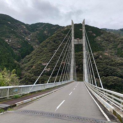 かよう大橋そのものも、立派な斜張橋です