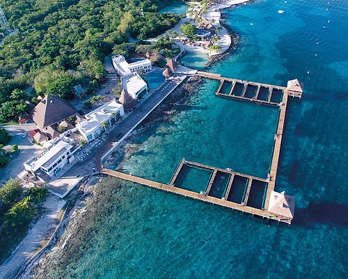 Aerial view from Dolphin Discovery Cozumel