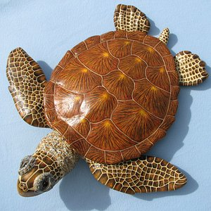 Hello, Thank you for your interest in my original Sea Turtle wall sculptures at Genesis Galleries. I am the artist Linda Hogan and have had my artwork in Genesis Galleries since 2011. I sculpt these in a non- toxic composite resin and then paint them in multiple layers of oils. I currently have 5 sizes from 9x11 to 30x31.  Aloha, Linda