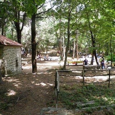 Area Attrezzata VIVAIO --- giochi-tavoli- Parco Avventura Stella Cilento SA