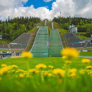 Summer in Olympiaparken