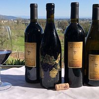 Overlooking the vineyard with a wonderful selection of the Natalie's wines