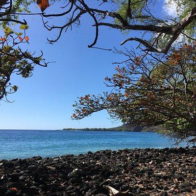 Kealakekua Bay Île d'Hawaï, Hawaï