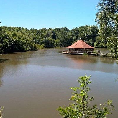 Lake View Yoga is Crawley Yoga's studio on a Lake