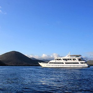 Our Galapagos Cruises combine contemporary design, privacy, and comfort all within the marvelous setting of the Galapagos Islands. The Galapagos Sea Star Journey has a capacity of up to 16 passengers, featuring seven spacious Galapagos Suites of about 270 sq. feet each (approx. 25 m) and one Sea Star Suite of about 375 sq. feet (approx. 35 m) equipped with panoramic windows to enjoy the wonderful landscapes of the islands.