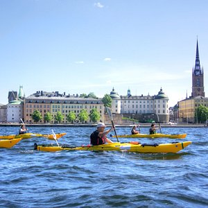 Join us kayaking in the heart of the city!