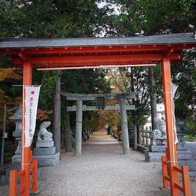 積田神社:鳥居からみた参道。紅葉がみえますね。