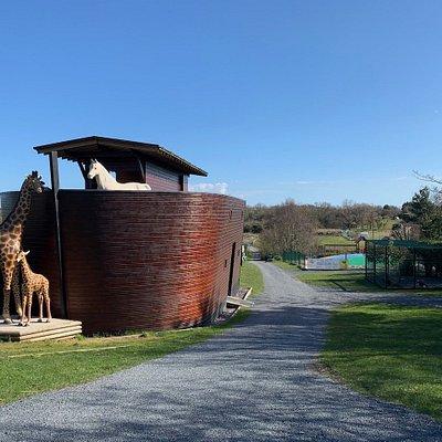 The Ark basking in the sunshine