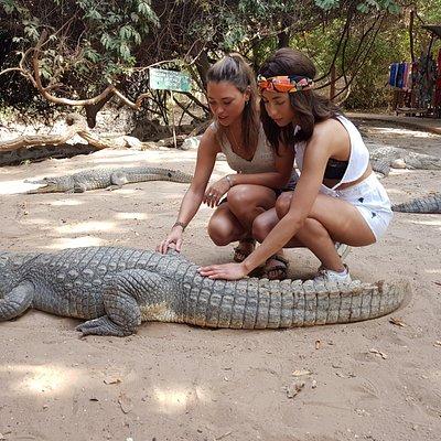 Crocodile pool Gambia with Skinny Black guide