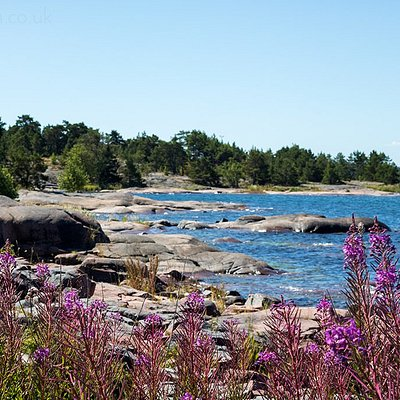 Aland Island sits between Finland and Sweden, and is part of an archipelago of more than 6500 islands!! This stunning coastline is just outside the village of Eckero.