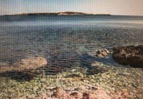 L'isolotto visto dalla riva di Cala Preveto .