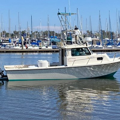 Pacific Bounty Sportfishing, 4 person fishing charter, San Diego