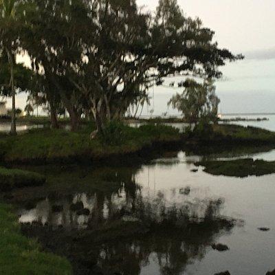 Kuhio Kalanianaole Park