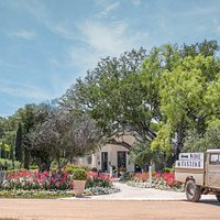 Signor Vineyards is a boutique family vineyard nestled in the heart of Texas Hill Country. Come and enjoy a glass or bottle in our sprawling gardens and tasting room.