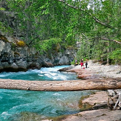 This is where we stop for a Picnic while on the hike Maligne 5 Bridges with Paula of Walks & Talks Jasper.
