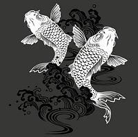 Sushi Nara Ristorante Giapponese