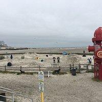 "The ""big dog"" section of the  Wildwood Dog Beach"