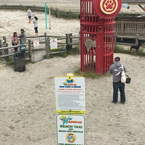 The entrance to  Wildwood Dog Beach as seen from the boardwalk.