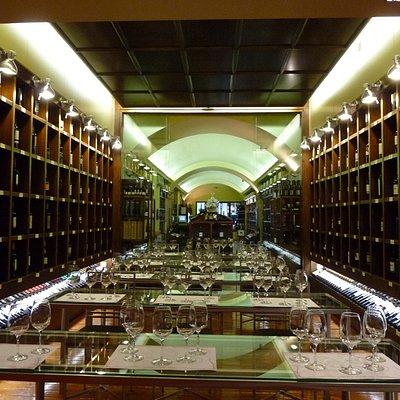 Exposicion de vinos y sala de catas