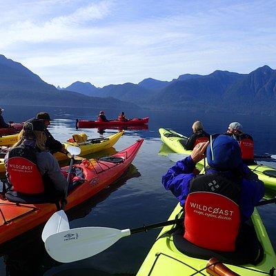 Kayaking Trips with Wildcoast Adventures