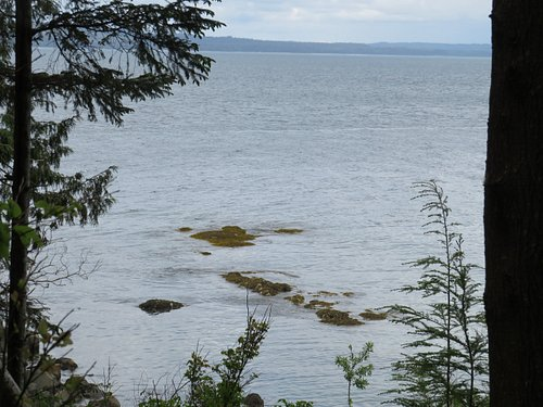 Another Skidegate inlet shot