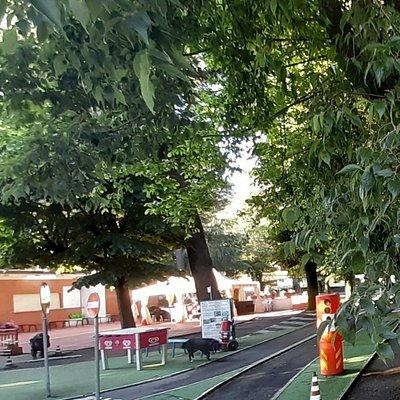 Parco Scuola del Traffico