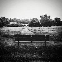Walkers Heath Park
