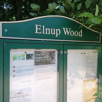 Elnup wood