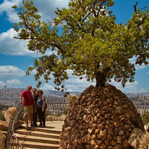 View of my friends with image of interesting tree and Jerusalem in background
