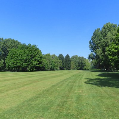South side of the Common - the golf course side