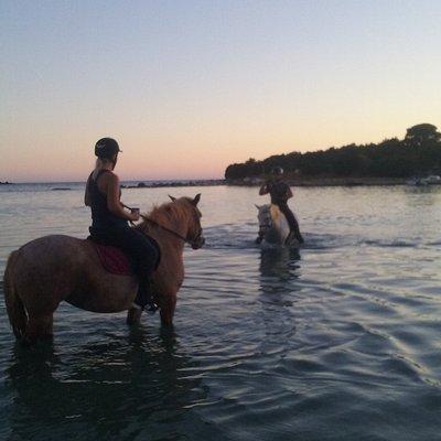 Baden  mit dem Pferd in der Bucht von Odysseus