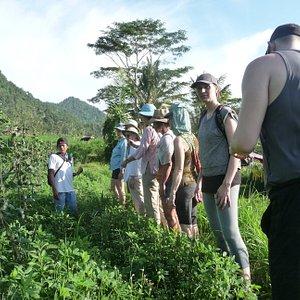 Rice paddies trek on our retreat in Sideman, Bali, 2017