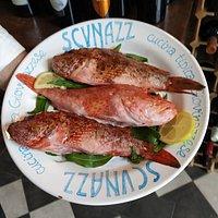 Il meglio del mare ,nel piatto SCVNAZZ 🌹 Giovinazzo