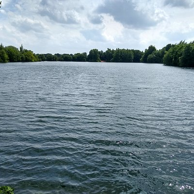 Picture of the lake