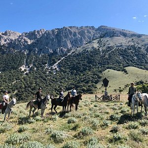 Madonie mountains on horseback