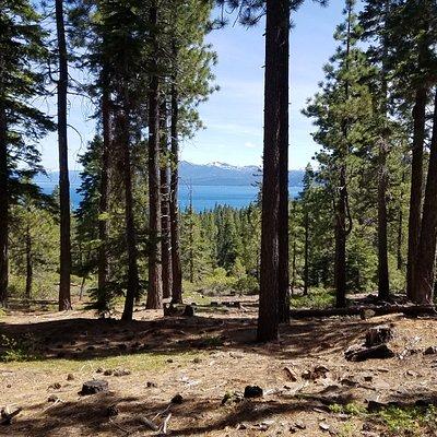 View of Lake Tahoe from Burton Creek Trail